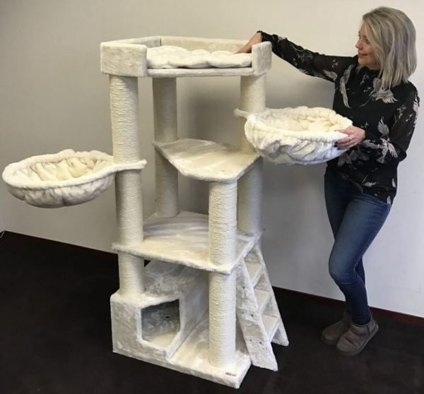 Why This Is The Best Cat Tree For Maine Coons   Purr Craze